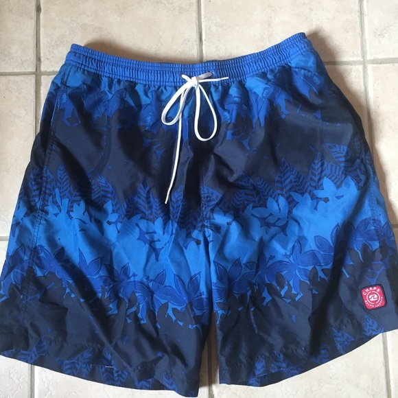 Chaps Other - CHAPS Ralph Lauren men's Swim trunks!